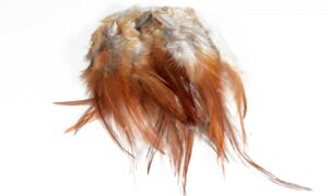 Cock Saddle Hackles – Brown