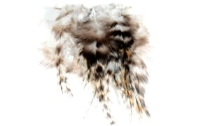 Cock Saddle Hackles – Grizzly