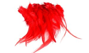 Cock Saddle Hackles – Red