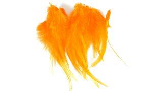 Cock Saddle Hackles – Orange