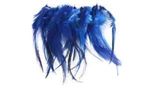 Cock Saddle Hackles – Blue