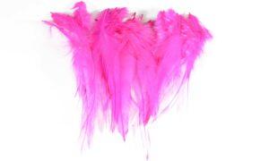 Cock Saddle Hackles – Pink